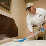 Bed bugs Control Dammam